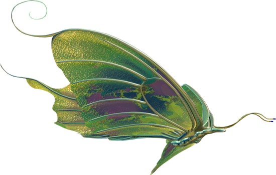 клипарт бабочки