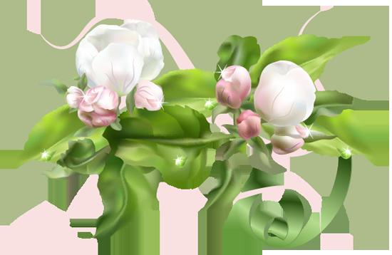 клипарт цветущее дерево