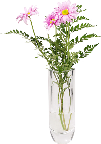 букет цветов герберы в вазе