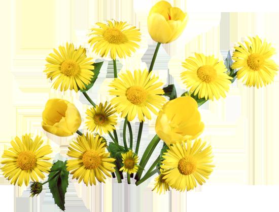цветы имени:
