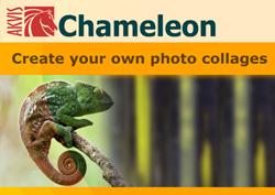 Программа AKVIS Chameleon