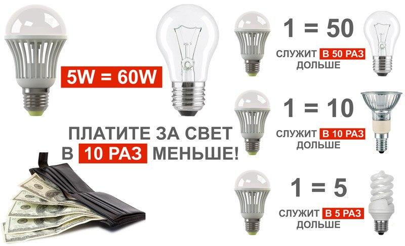 lampyi-2